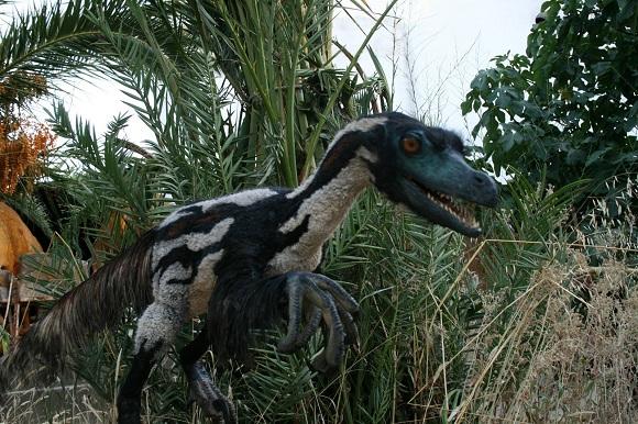 Velociraptor[1]