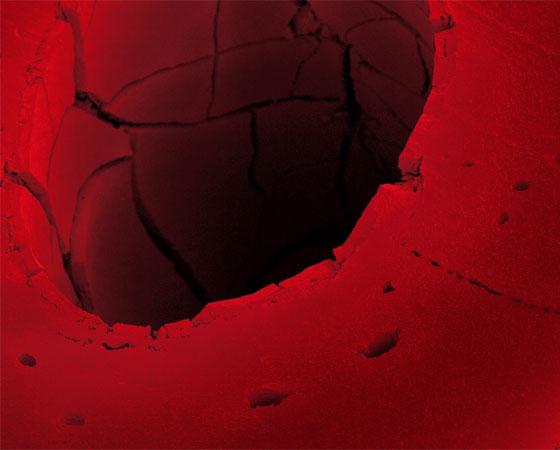 Alcaçuz vermelho.