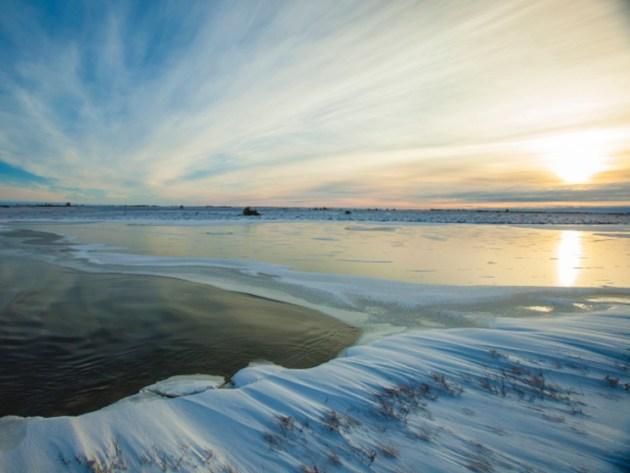 tundra-at-sunset[1]