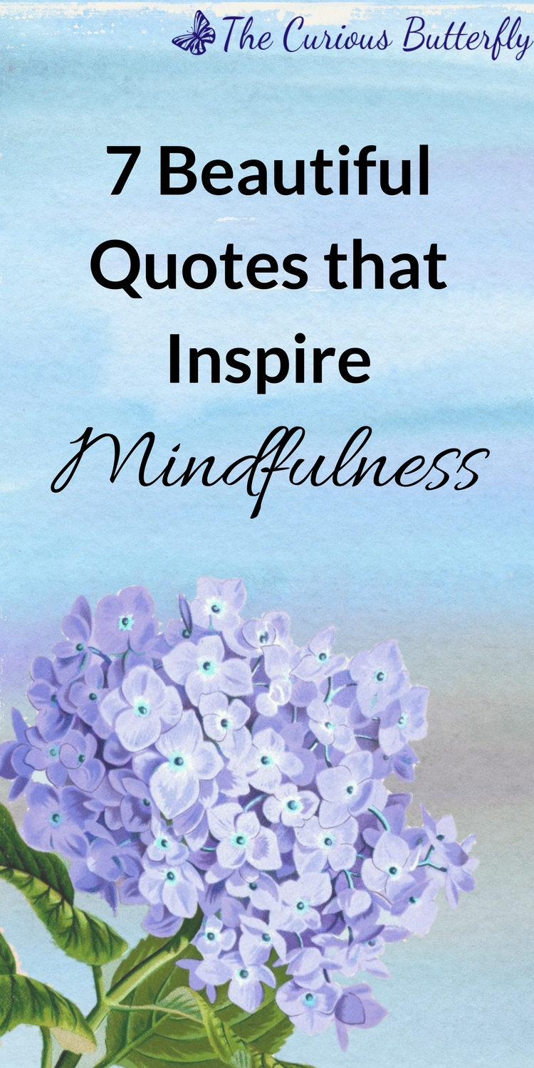 Quotes About Mindfulness 7 Beautiful Mindfulness Quotes To Inspire You  The Curious Butterfly