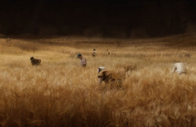 thehost-wheat-field