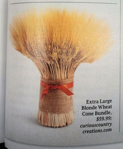 Featured in Southern Living Magazine
