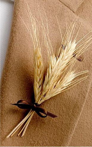 wheat b