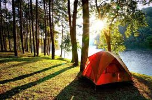 opt for camping for budget travel.