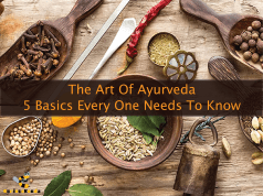 the art of ayurveda