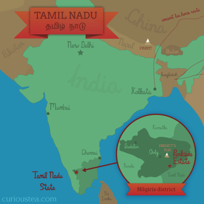 Parkside estate, Nilgiris district, Tamil Nadu