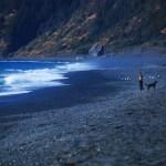 black sand beach california - west coast road trip
