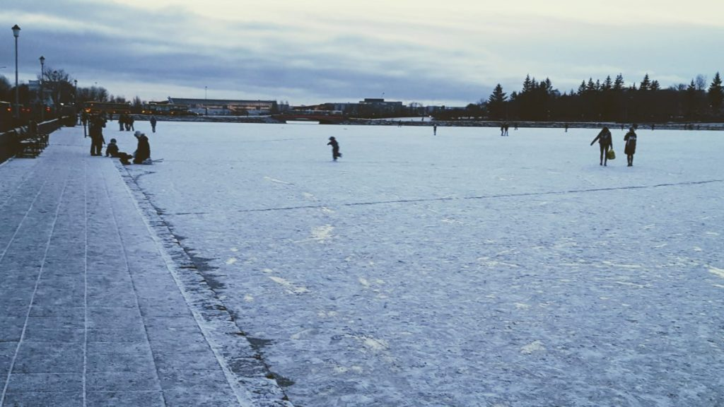 Frozen lake in Reykjavik. The university is across the lake, so students were walking across the lake to take a short cut. There were also people ice skating.