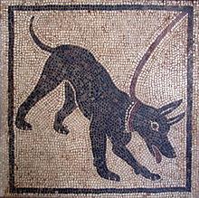 Mosaico romano mostrando un perro con collar.