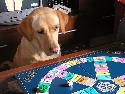 Jara jugando al trivial