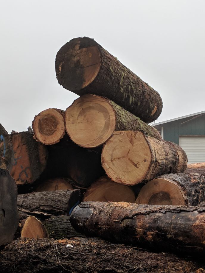NOT GOOD: logs have no open space around them for loading