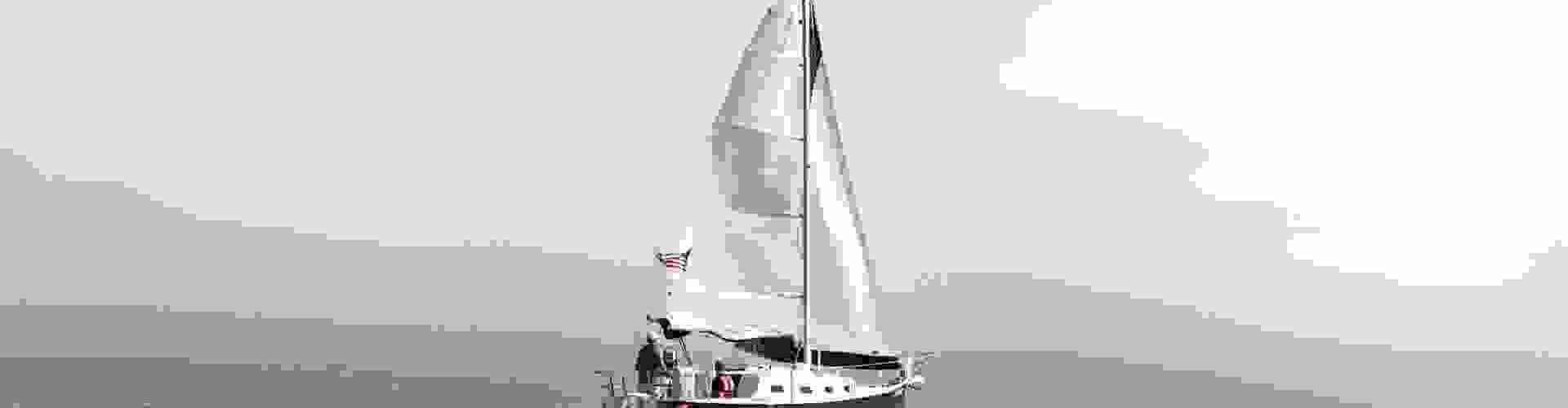 Yacht Race '15