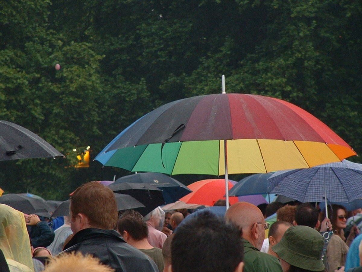 Prode, in the Hyde Park rain, 2003