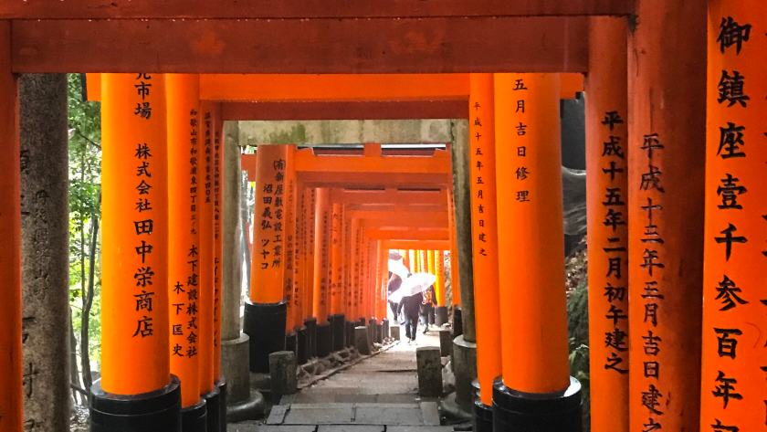 Photo of Day 8: Fushimi Inari Taisha