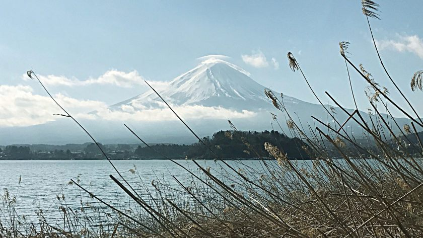 Photo of Day 4: UNESCO World Heritage Site, Mt Fuji