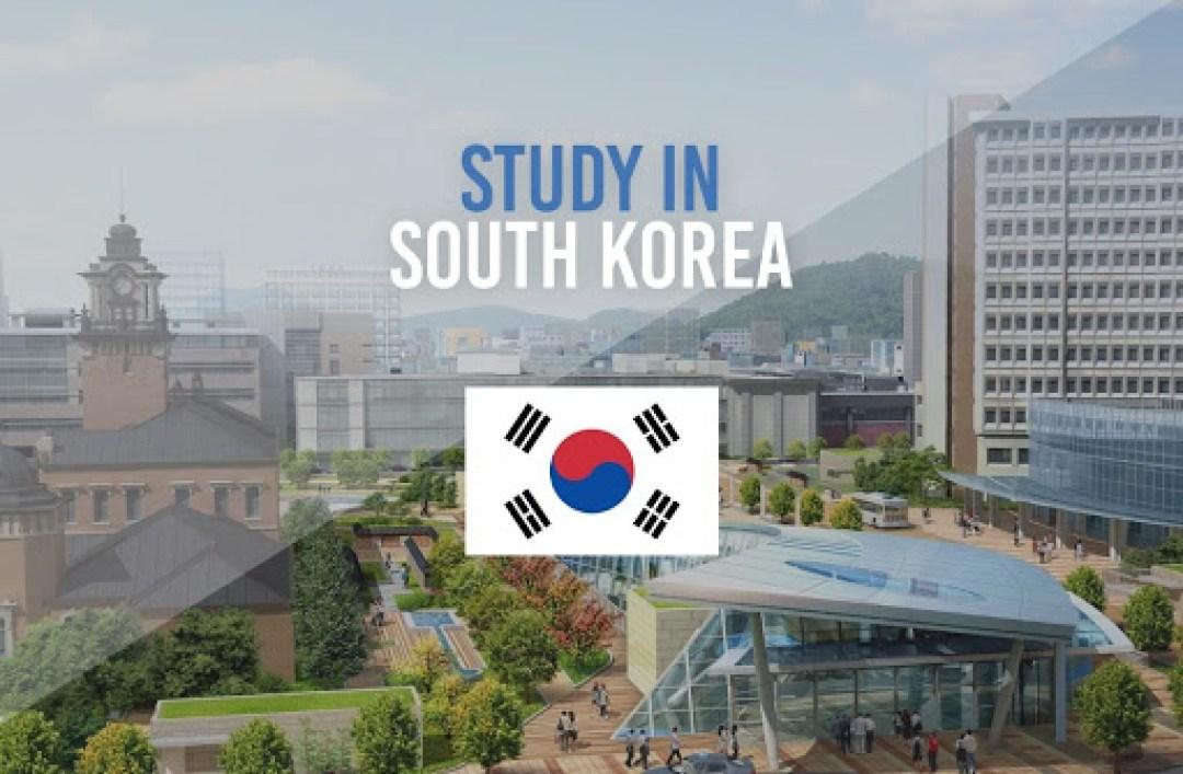 Internships in Korea