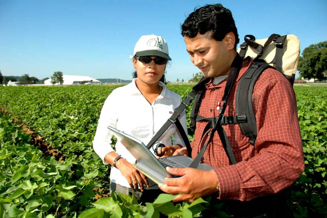 Agricultural Engineering Course Details