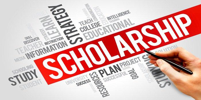 csc scholarship
