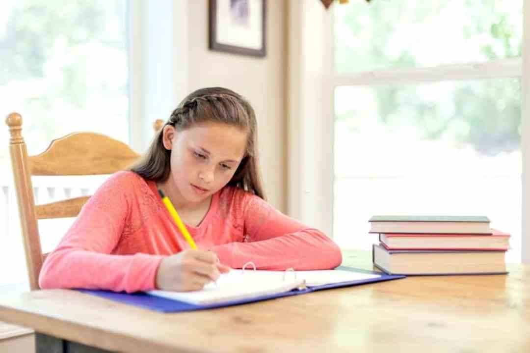 6th Grade Argumentative Essay