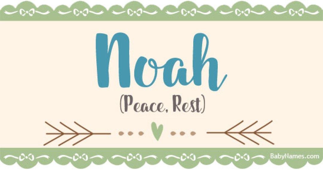 Noah Betekenis