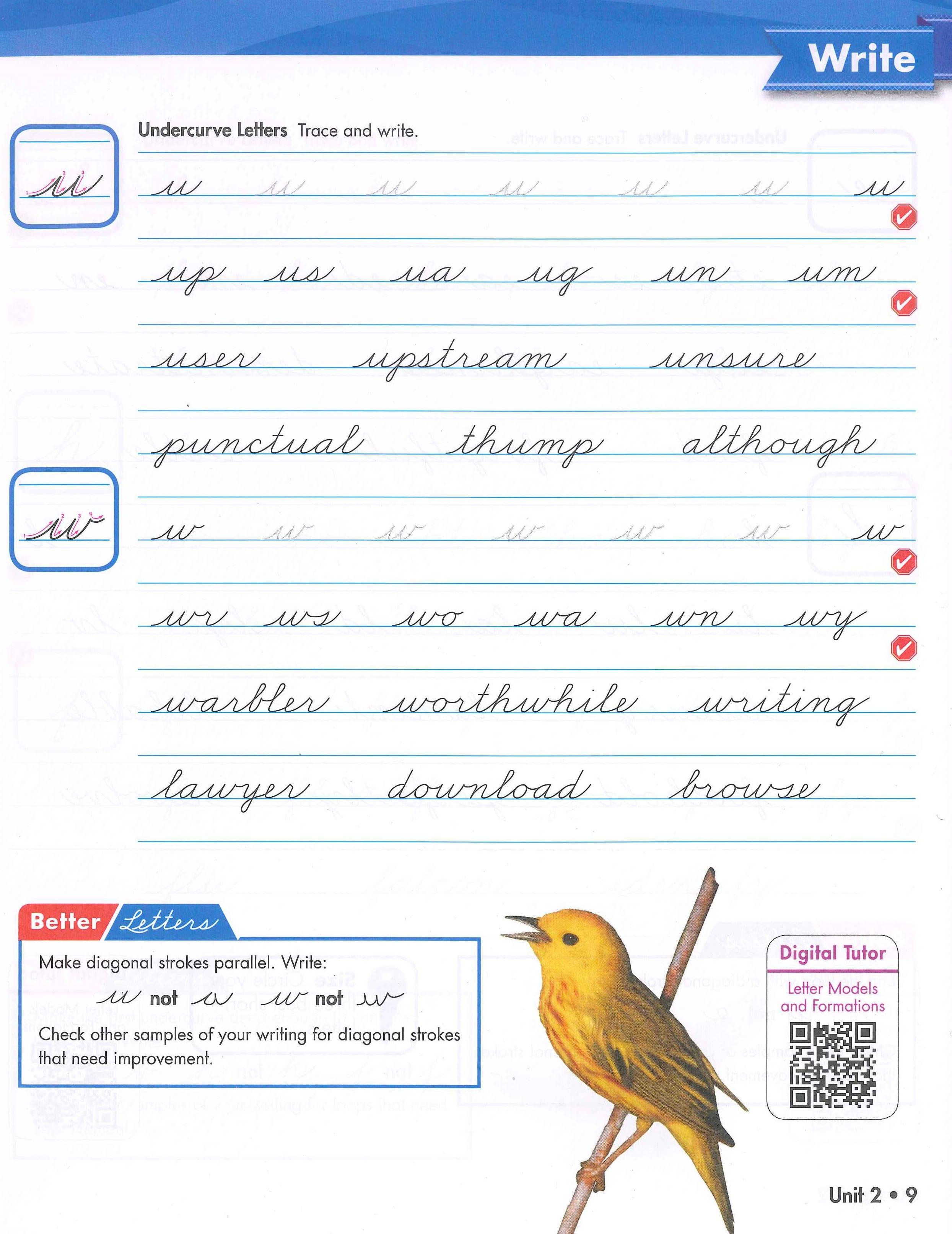 Sale On Zaner Bloser Handwriting M Cript And Cursive