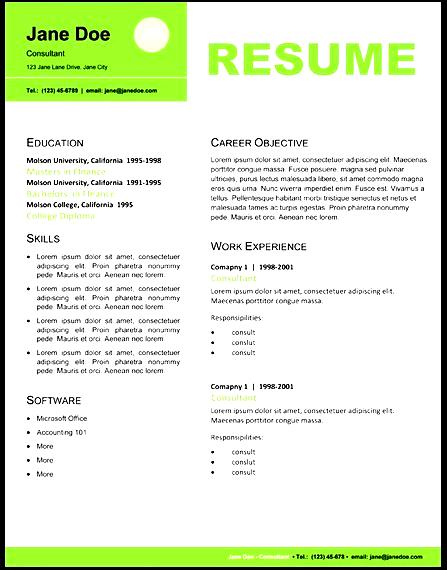 resume template graphic professional resume layout it professional