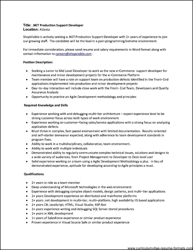 resume examples for it professionals software engineer resume example sample professional resume templates microsoft word resume - Professional Resume Samples In Word Format