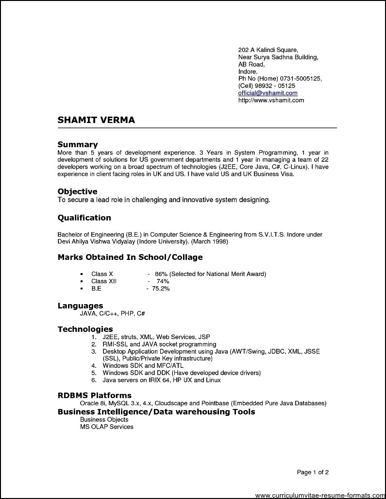resume format for experienced it professionals doc free samples