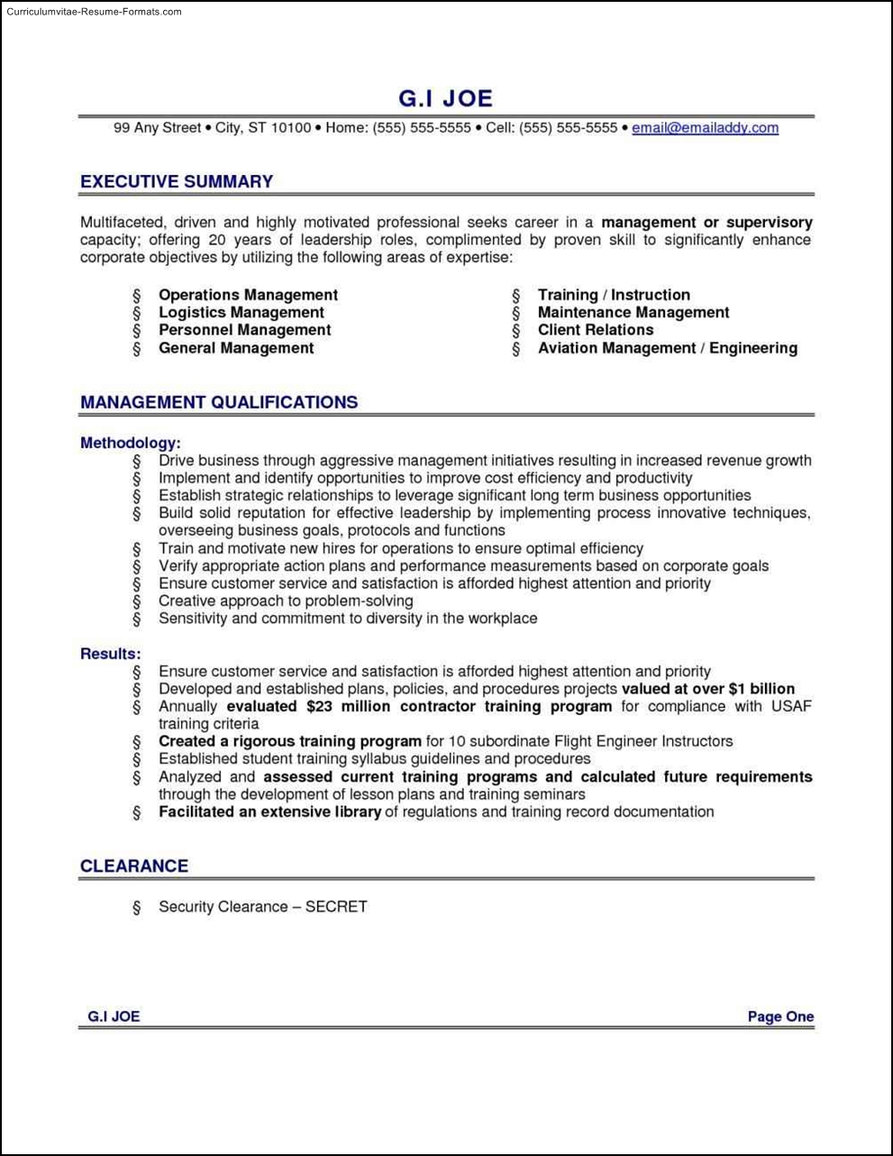 Executive Summary Resume Example Template Free Samples