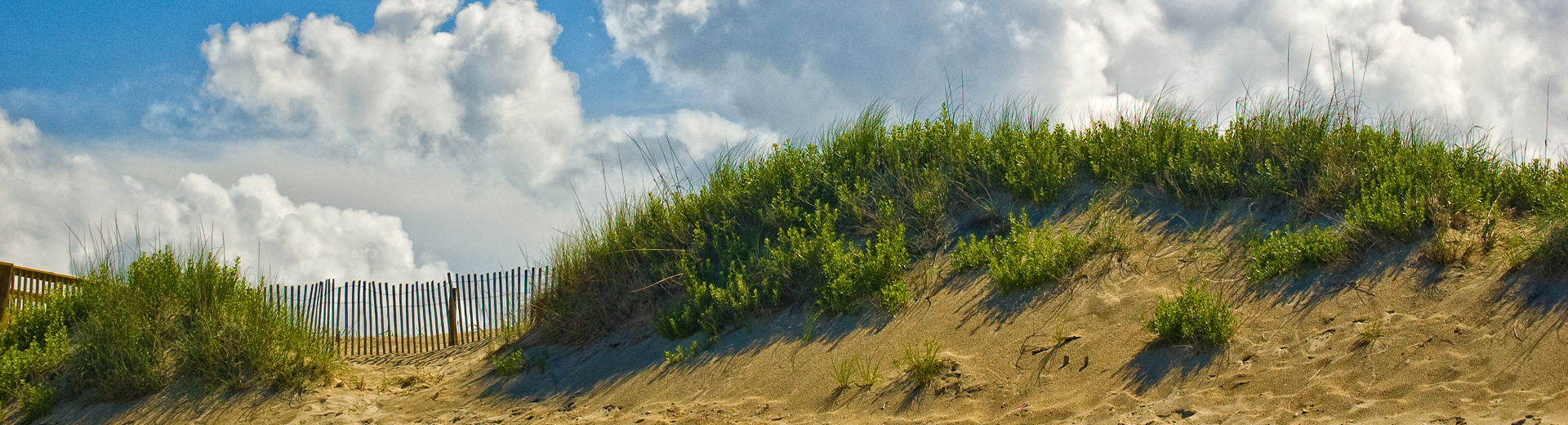 dunes in corolla beach