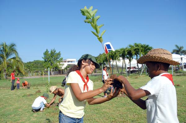 educacion-ambiental-gratis-online-curso