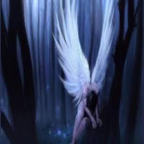 Curso Meditando com o Santo Anjo Guardião