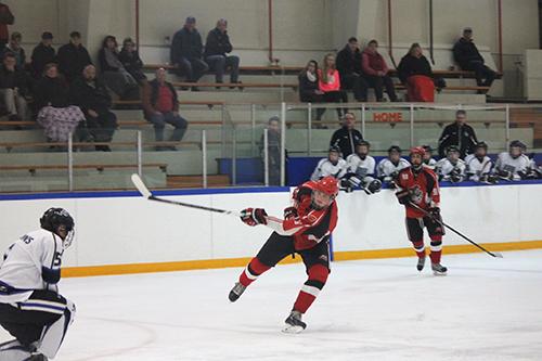hockey_mom_5