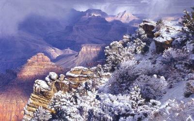 Brilliant Soliloquy of Winter