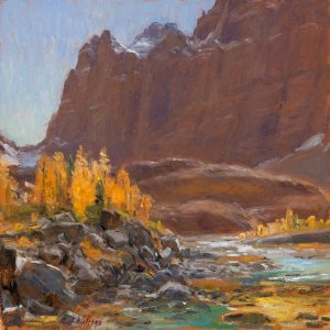 Alpine Larches of Opabin Plateau by Curt Walters