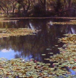Rio Grande Reflections