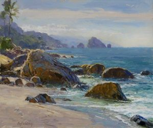 Rocky Shores Sea of Cortez