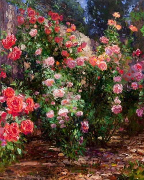 Fence Line Roses