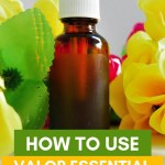 10 Valor Essential Oil Uses Everyone Should Know Cushy Spa