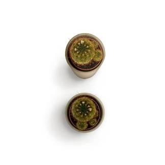 item-cover-small-cactus-1