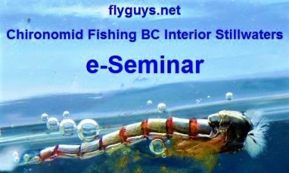 Chironomid Fishing BC Interior Stillwaters eSeminar