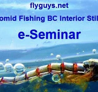 Chironomid Fishing BC Interior Stillwaters eSeminar