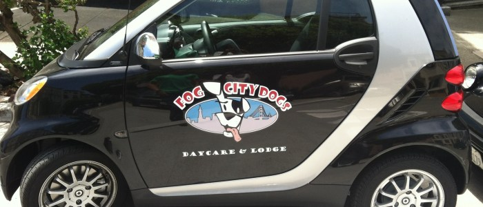 Fog City Grooming Smart Car Wraps