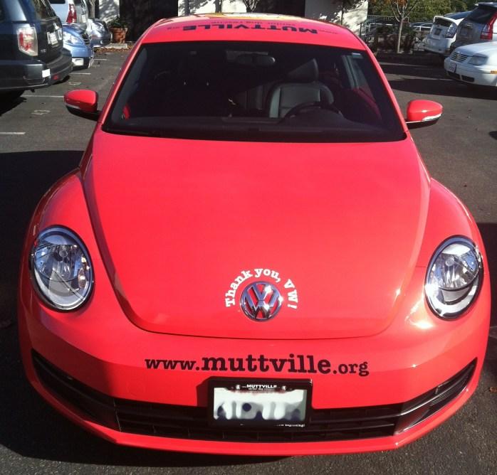 muttville car wrap-02