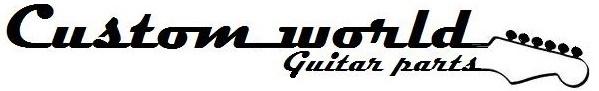Fender Strat Pickguard