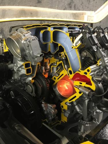 BG Corvette
