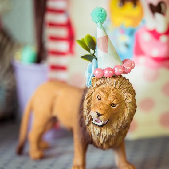 Der Löwe hat einen lustigen Hut auf