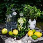 Pfefferminz Zitronenwasser