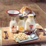 Selbst gemachte Cashew Milch