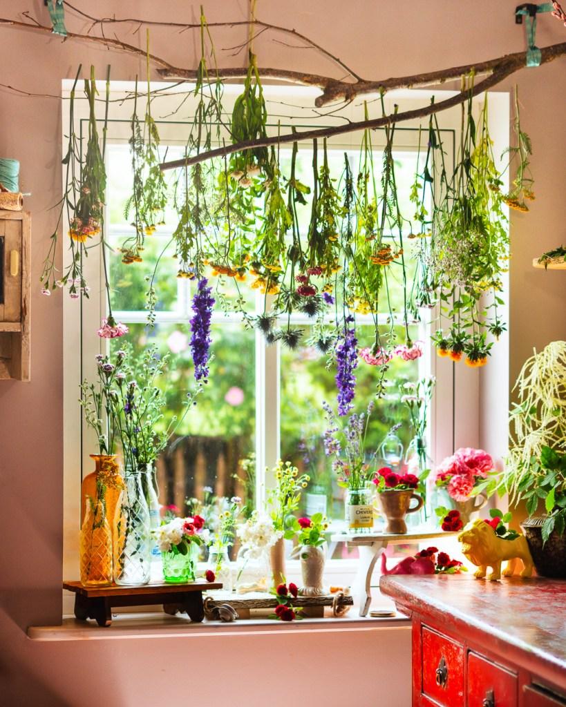 Blumen die ich zum Trocknen am Fenster aufgehängt habe